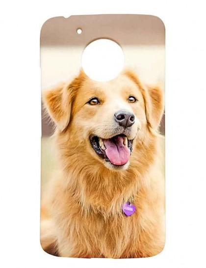 Light Brown Labrador Retriever - Motorola Moto G5 Printed Hard Back Cover.
