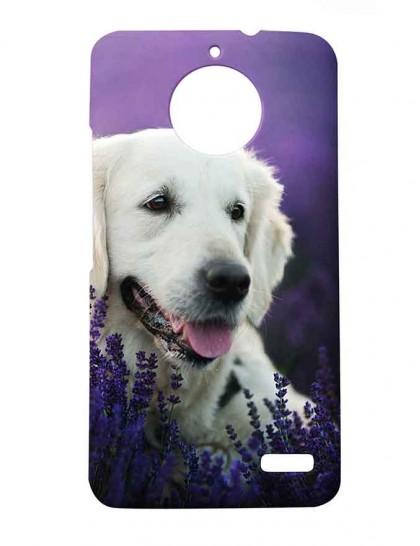 Labrador Dog In Lavender Garden - Motorola Moto E4 Printed Hard Back Cover.