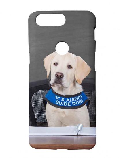 Labrador Retriever - One Plus 5T Printed Back Cover.