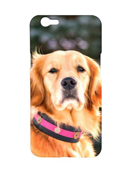 Dog Canis With Pink And Black Color Dog Collar - Oppo F1s Printed Hard Back Cover.