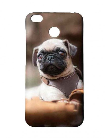 Cute Pug With Collars Belts - Redmi 4 Printed Hard Back Cover.